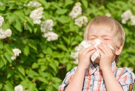 Allergie bei Kindern