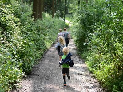 Eine Familie geht im Wald wandern.